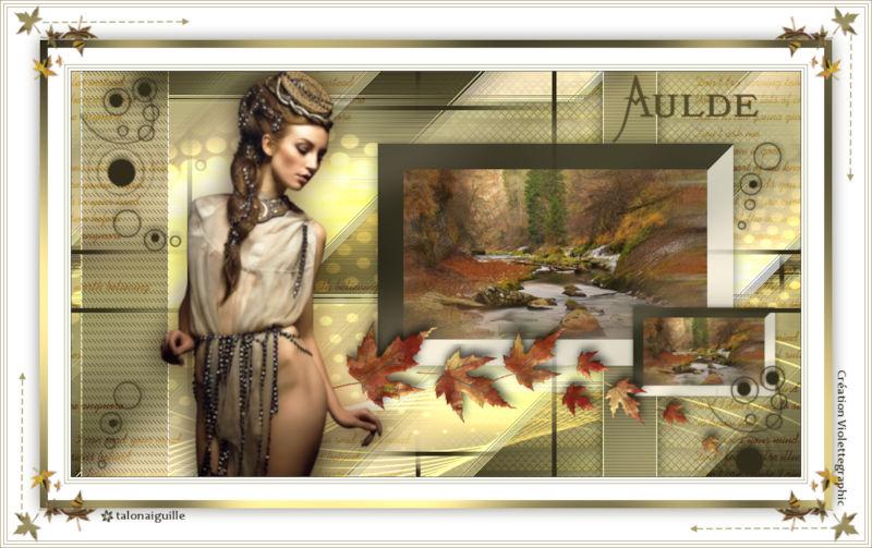 *** Aulde ***