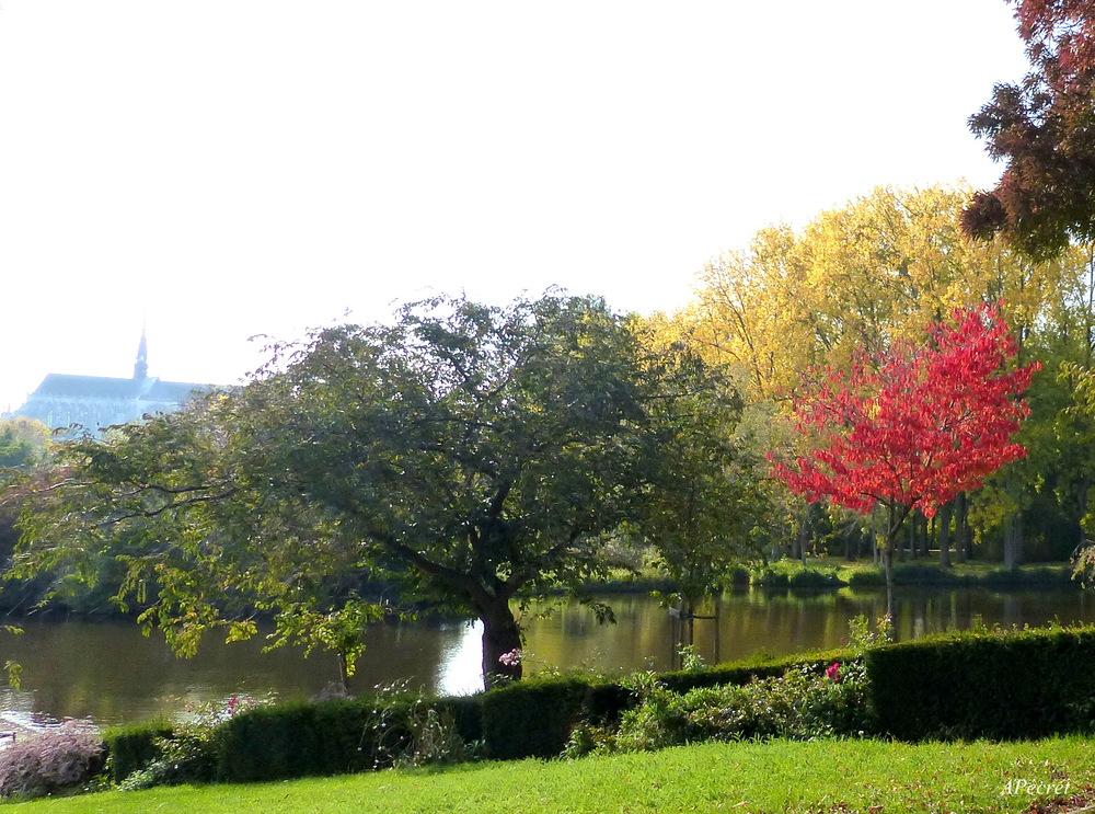 L'automne à Amiens