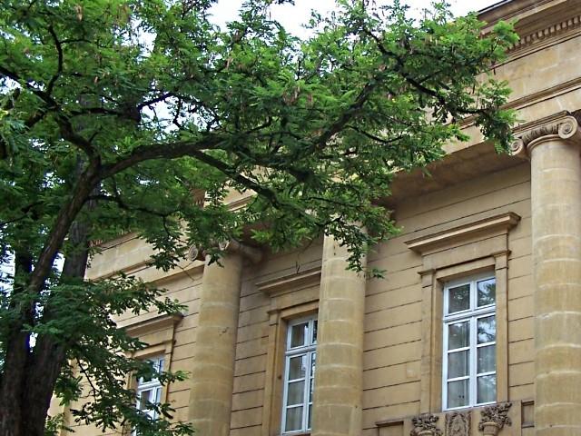 Metz Architecture 22 21 03 10