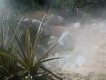 Rincon de la vieja fumeroles