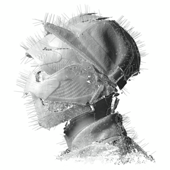 Woodkid-The-Golden-Age