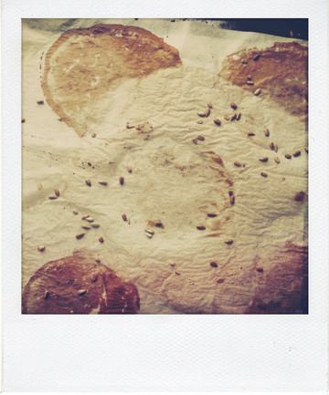 Buns Vegan à la farine de seigle