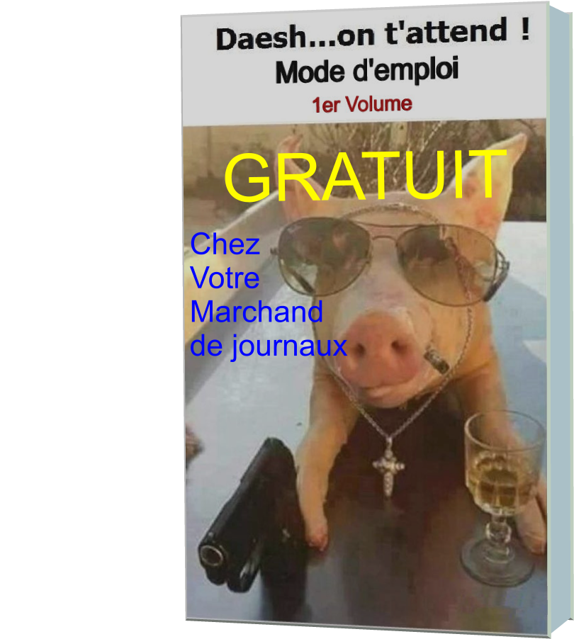 Daesh...on t'attend..!