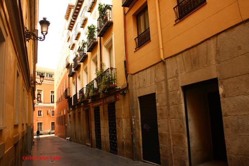 """Résultat de recherche d'images pour """"Calle de la Paz Madrid"""""""
