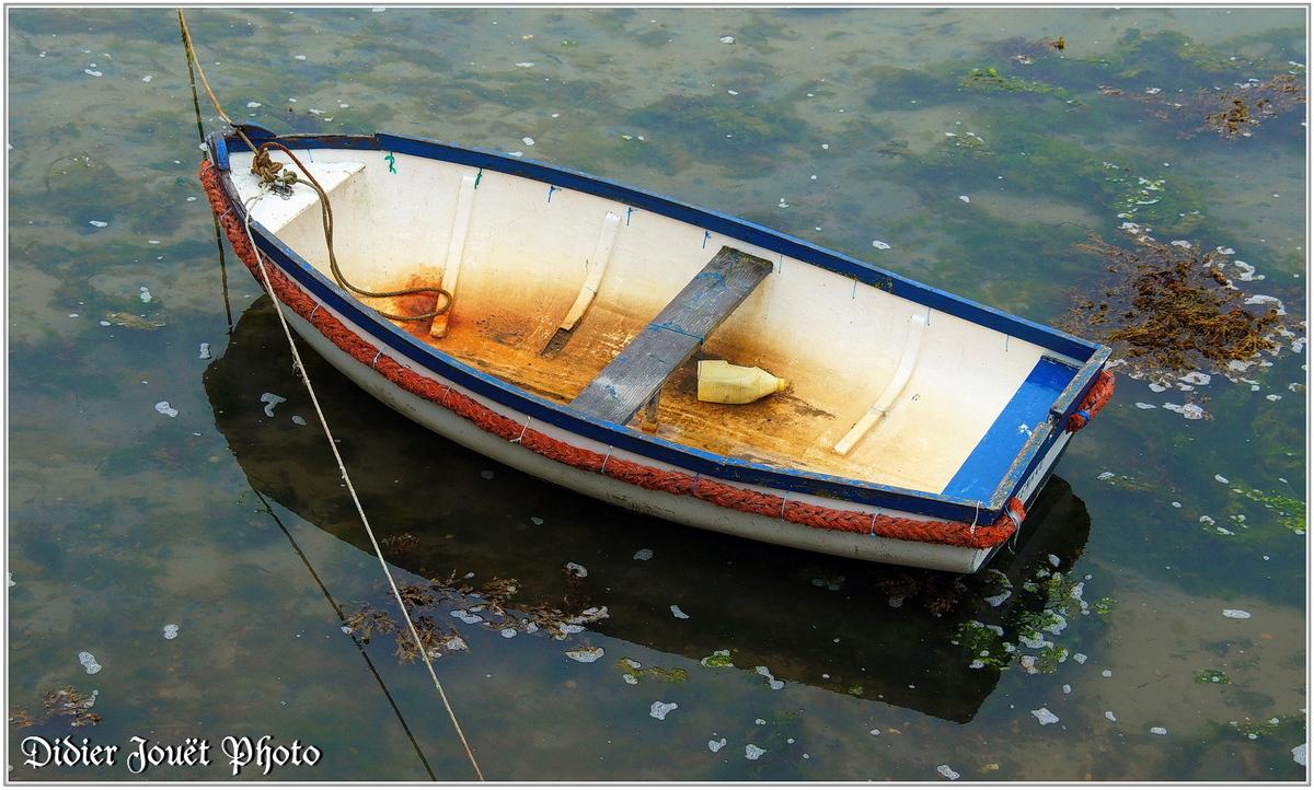 (29) Finistère - Roscoff (1)