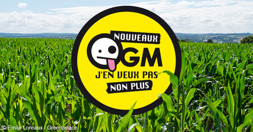 Boycotte de Monsanto, une liste simple !