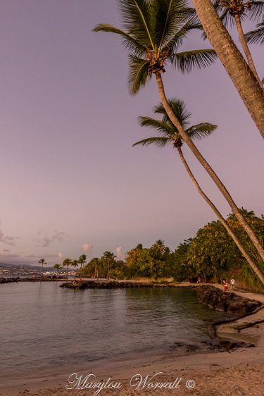 La Martinique : Journée du 24 janvier 2020