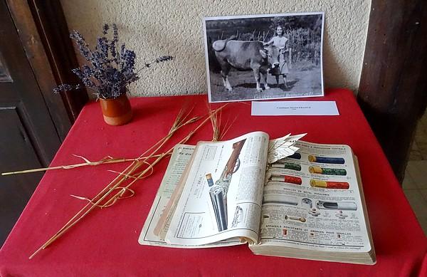 """""""Oh ! la vache !"""" souvenirs d'autrefois dans les environs de Recey sur Ource..."""