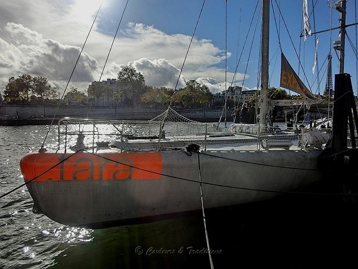 Tara, bateau mythique
