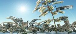 Finir l'année - Économique - 2014 en beauté