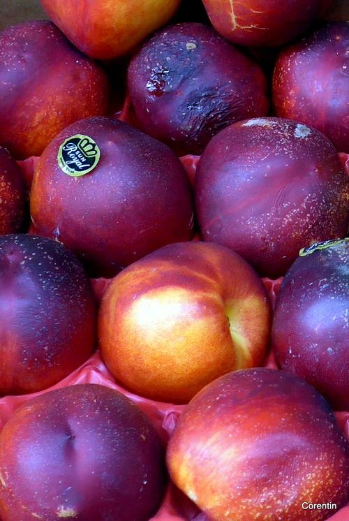 Des fruits de saison ...