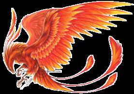 IV - Armure de l'oiseau du paradis (Apus Cloth)