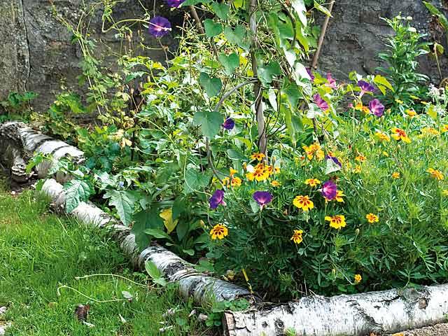 Dites moi a little bit of paradise - Le jardin champetre magog lille ...