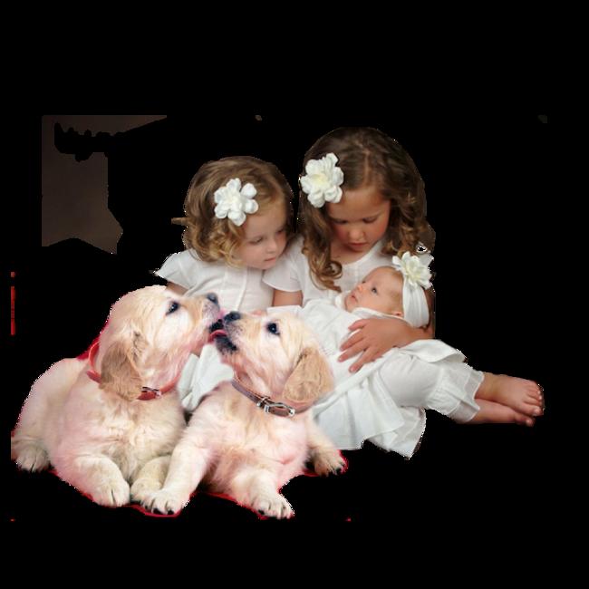 L enfant et les chiens