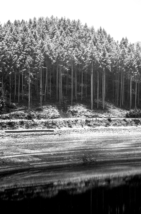 Balade hivernale #7, Renaison, janvier 2015