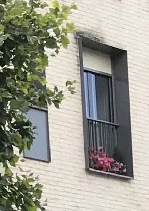 Pas si mal ... la fenêtre ...