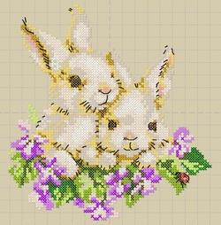 Lapins-violettes.