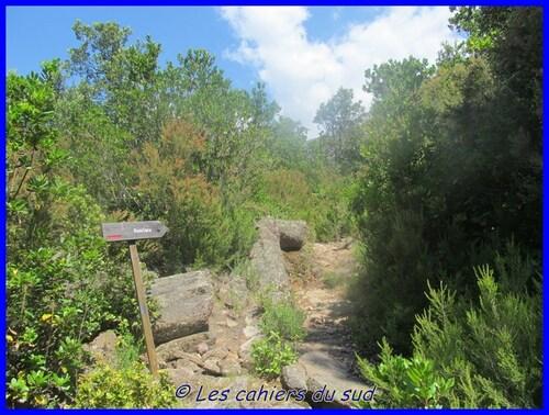 Corse 2015 - La Punta Bonassa