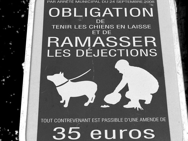 Autour du Centre Pompidou-Metz il y a... / 50
