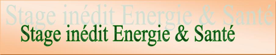 Stage d'été Energie et Santé