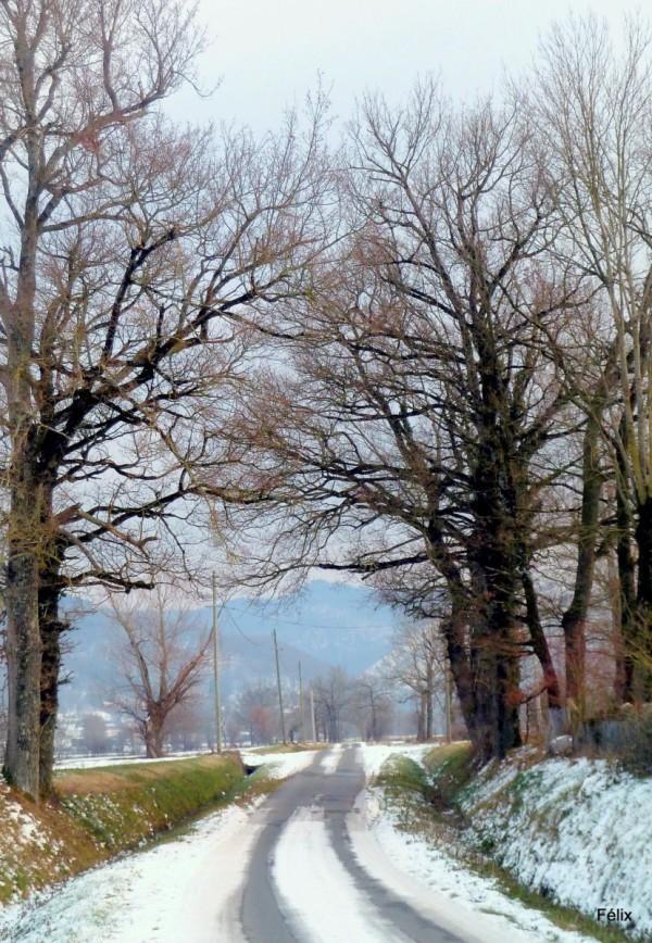 w01 - Neige et route