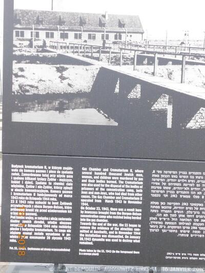 LE CAMP DE CONCENTRATION AUSCHWITZ -BIRKENAU II
