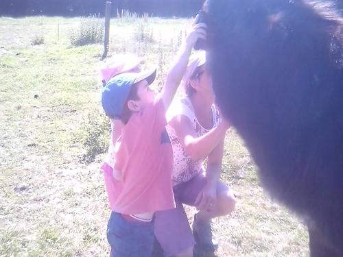 Pique-nique à la ferme
