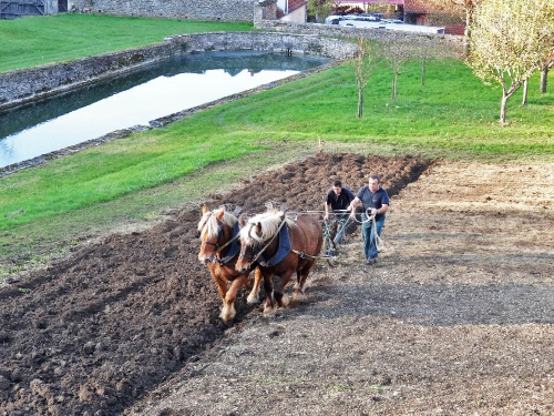 Des labours dans les jardins du château de Bussy-Rabutin...