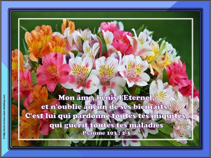 Mon âme, bénis l'Eternel - Psaume 103 : 2-3