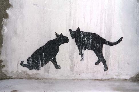 Sur le mur...