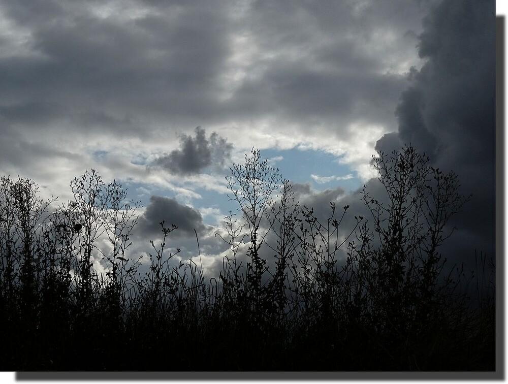 ...dessine-moi une âme couleur d'orage...