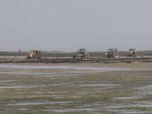 Etape06-La Rochelle(17)-Ile de Ré-La Rochelle(17)