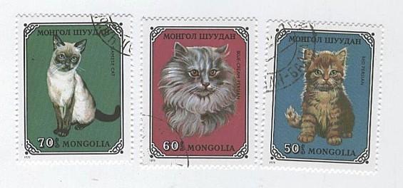 chat-mongolie-1979.jpg