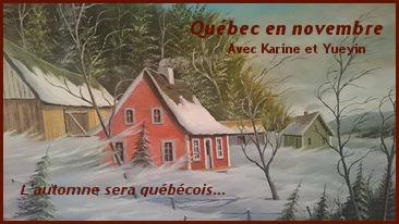 Québec en novembre , le bilan