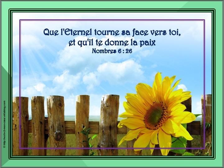 Que l'Eternel tourne sa face vers toi - Nombres 6 : 26