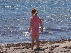 Le joli mois de mai à la maison de la plage