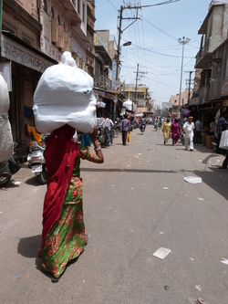 Le Rajasthan
