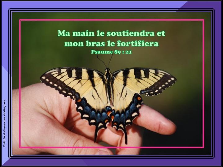 Ma main le soutiendra - Psaume 89 : 21
