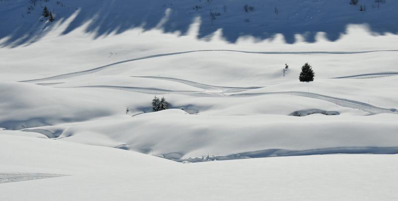 Balade d'hiver : le Praz-de-Lys (7)