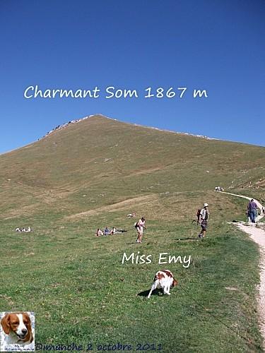 2011 02 10 charmant som 1