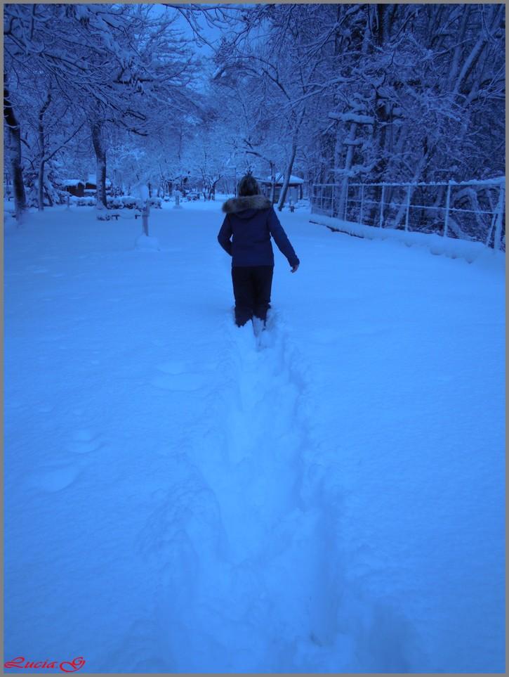 Toujours la neige .....