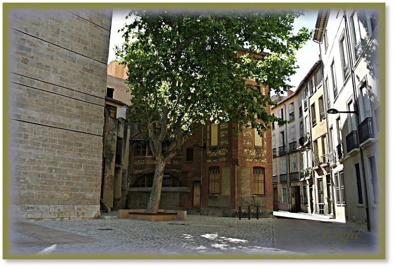 La cathédrale Saint Jean Baptiste