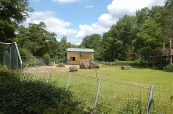 Zoo Neunkirchen 2012 012