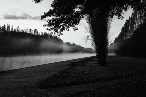 Une brume sur un canal