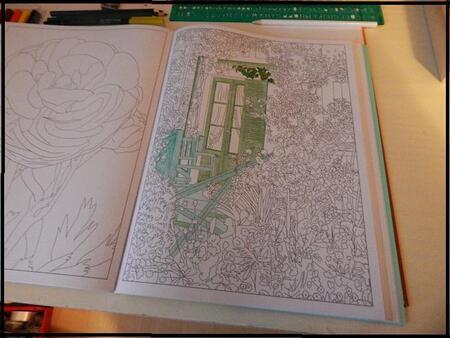Nouveau loisir: mes cahiers de coloriage