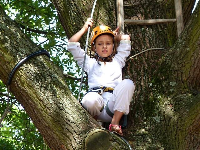 Parcours dans les arbres 1 Metz mp1357 2011