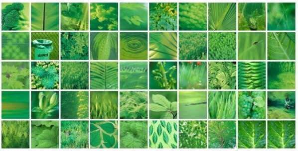 jour-vert.jpg