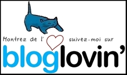 Suivre ce blog sur Bloglovin'