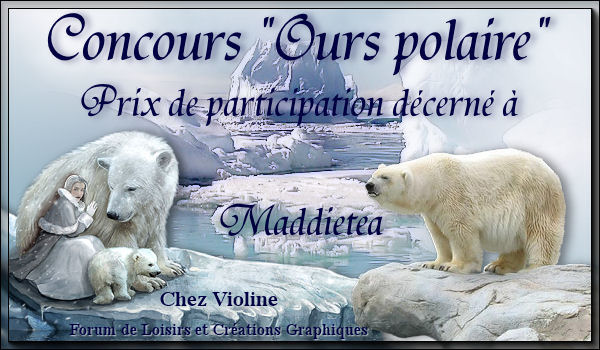 Concours Ours Polaire