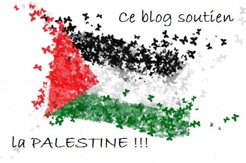 photos-drapeau-palestinien-nb15978